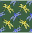 colorful stilized dragonfly on green background vector image vector image