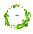 flying green leaves on white background vector image vector image