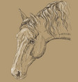 horse portrait-4 on brown background vector image vector image