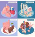 human organs 2x2 design concept vector image vector image