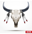 Indian totem animal skull and feathers vector image