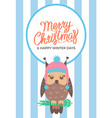 merry christmas owl on branch vector image vector image