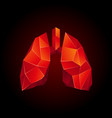 red low poly human lungs on a black background vector image vector image