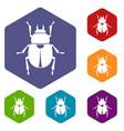 scarab icons set hexagon vector image vector image
