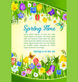 spring time holiday flowers greeting poster vector image vector image
