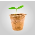 Sprout in a pot isolated on gray background vector image