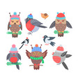 collection of birds icons vector image vector image