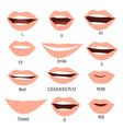 famale mouth animation phoneme mouth chart vector image vector image