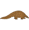 pangolin animal cartoon vector image vector image