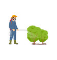 farmer spraying bushes icon vector image