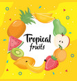 group tropical and fresh fruits circular frame vector image