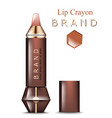 lip crayon realistic product packaging vector image vector image