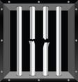 prison bars metal vector image