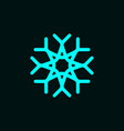 snowflake symbol logo template with star icon vector image