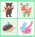 animals in warm clothes vector image