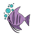 cute ornamental fish with air bubbles vector image vector image