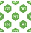 Dollar banknote pattern vector image vector image