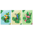 exotic birds and tropical leaves toucan parrot vector image
