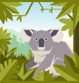 flat geometric jungle background with koala vector image vector image