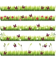 grass with flowers vector image