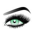 green woman eye with long false lashes with vector image