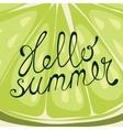 Lime Hello summer card vector image