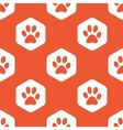 Orange hexagon paw pattern vector image