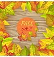 Fall Sale Banner Isolated on Wooden Background vector image vector image