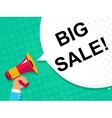 Hand holding megaphone with BIG SALE announcement vector image vector image