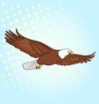 pop art background bird eagle falcon of vector image