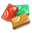 Red yellow and green soap in cartoon style vector image