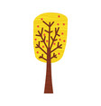colorful autumn tree cartoon yellow orange red vector image