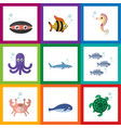 flat icon marine set of scallop cancer vector image vector image