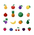 Icons Fruits and Berries in Flat Style Set vector image vector image