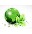 Natural green World with leaves and water drops vector image vector image