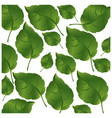 pattern green leaves with branch nature icon vector image