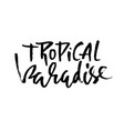 tropical paradise hand drawn lettering isolated vector image vector image