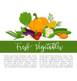 organic vegetables food poster background template vector image vector image