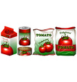 Tomato in different packaging vector image vector image