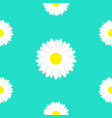 white daisy marguerite chamomile icon cute flower vector image vector image