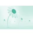 Daisies growing in a meadow Everything is covered vector image