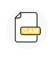 gam file format extension color line icon vector image vector image