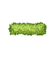 green grass landscape design element top view vector image vector image