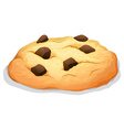 Chocolate chip cookie on white vector image