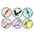 Set of Beautiful Wild Birds vector image