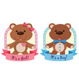 banner design with teddy bears in blue an pink vector image vector image