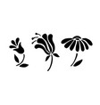 black flowers icon set simple blossom collection vector image vector image