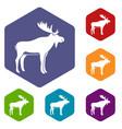 deer icons set hexagon vector image vector image