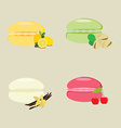French dessert macaroon vector image