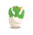 funny bird baby hatching from egg vector image vector image